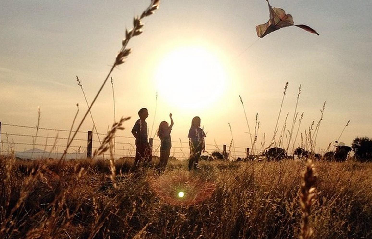 Aquí buscant cobertura... de @molluria, va ser el primer premi d'instagram el 2014