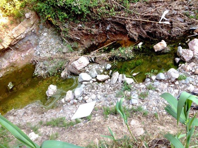 L'aigua estancada a les rieres és un focus de la plaga FOTO: Cedida