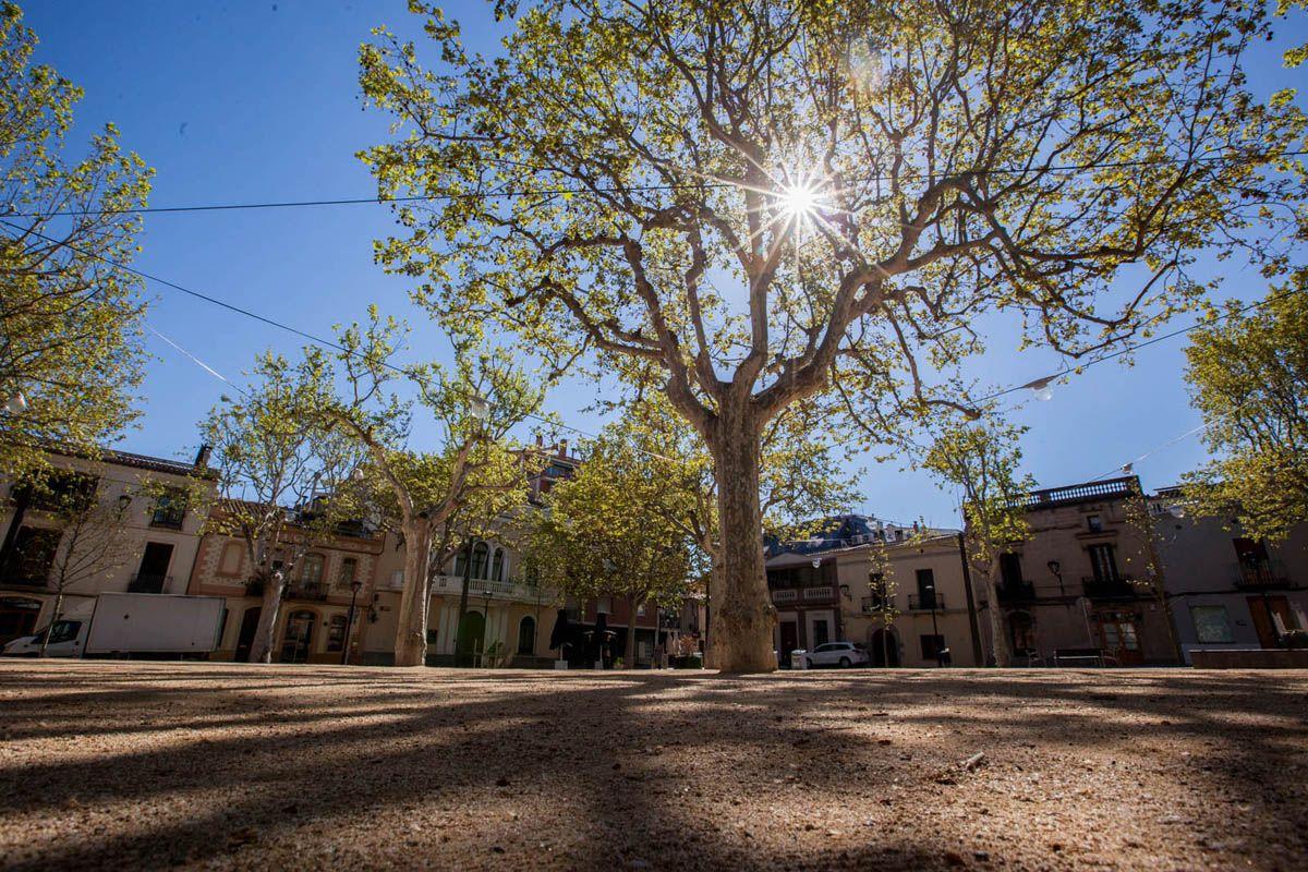 Plaça De Barcelona A Sant Cugat FOTO: Lali Puig