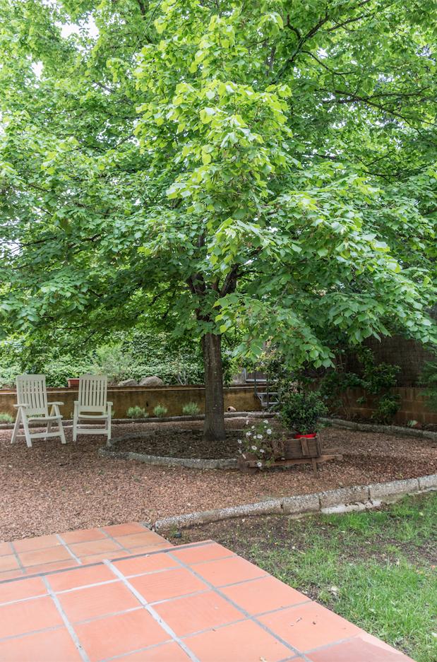 Una zona del jardí. FOTO: Cedida