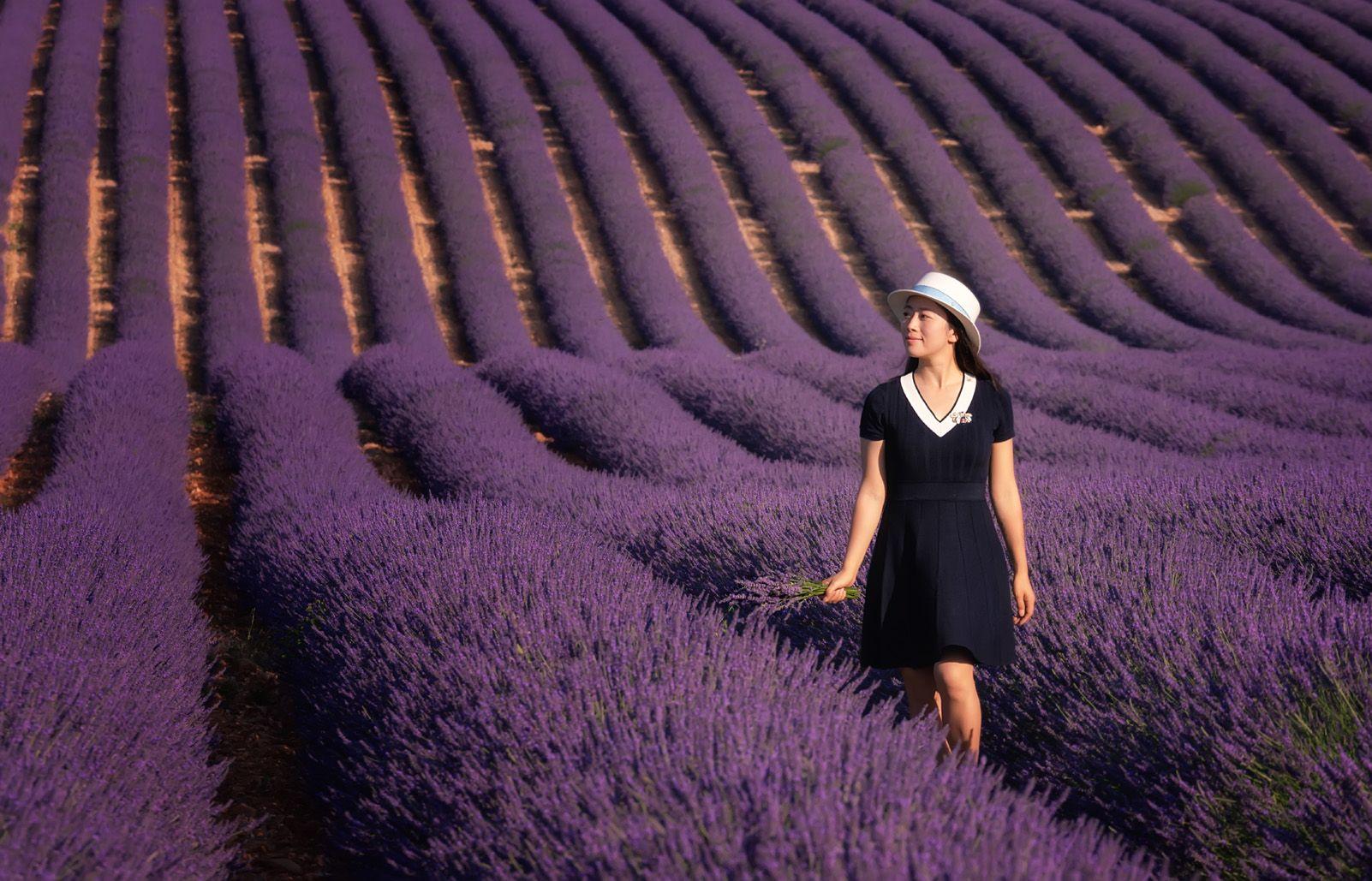 "9è Premi categoria Viatges. ""Lavender dreams"" de Antoni Figueras."