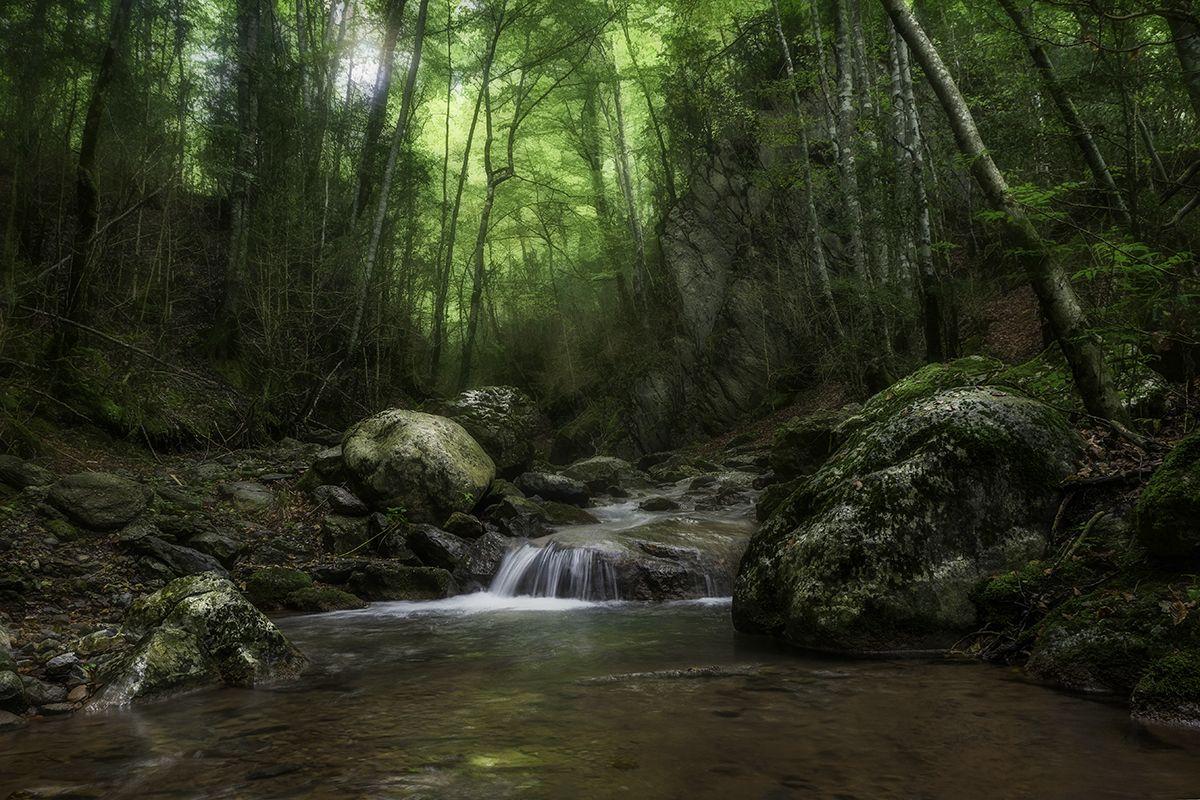 """Albert Rios Lopez """"aigua i natura"""""""