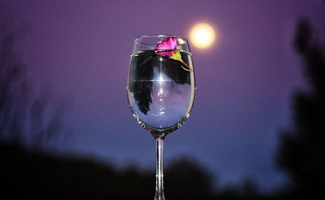 """Cristina Burguillos Viladot """"Brindant amb la lluna"""""""