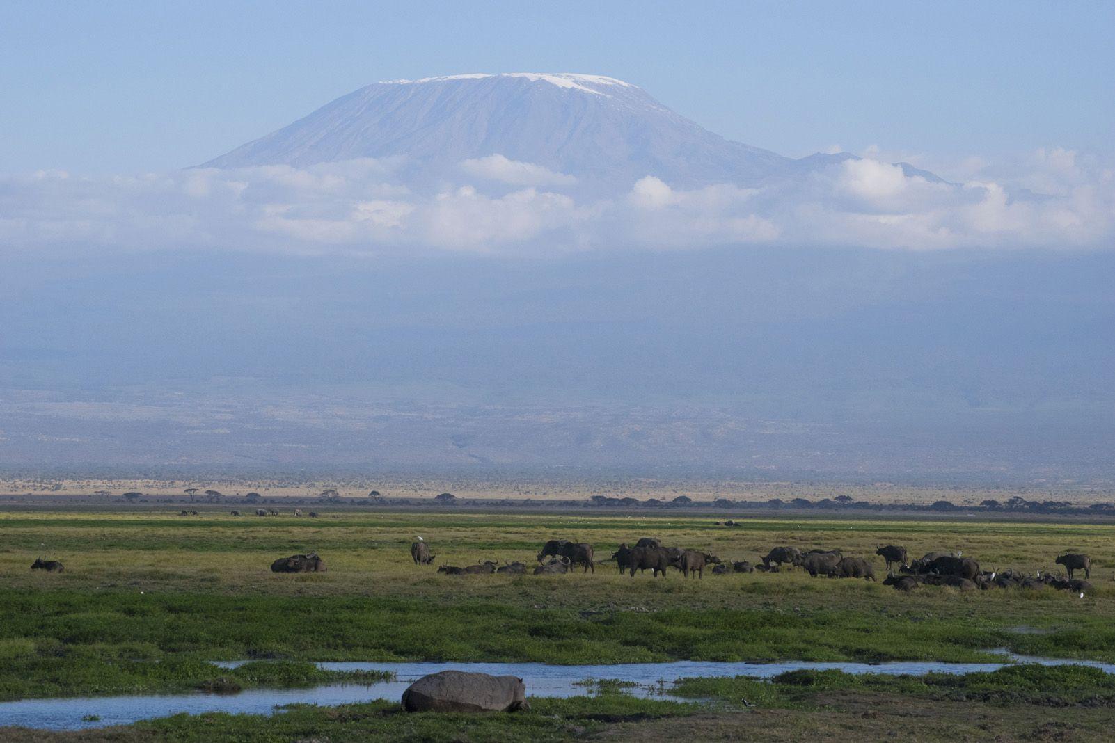 """David Moral Curcó """"Kilimanjaro sobre els núvols"""""""