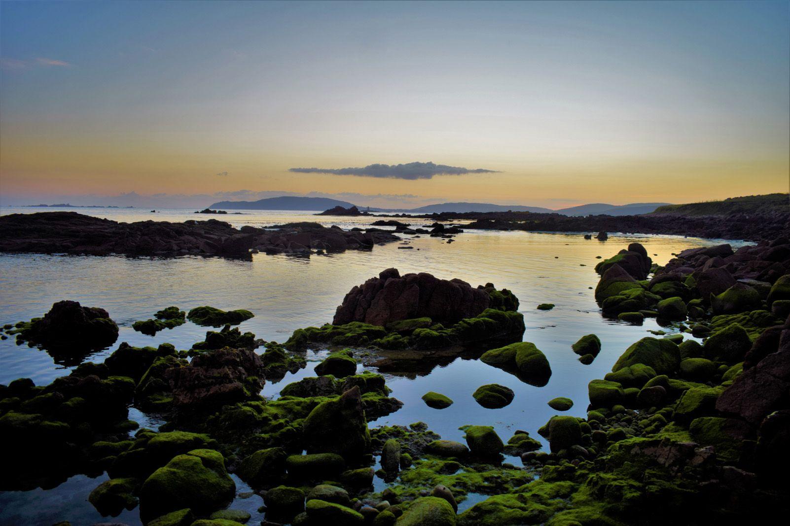 """Jorge Andreu Elorduy """"Mar, roques, pau."""""""