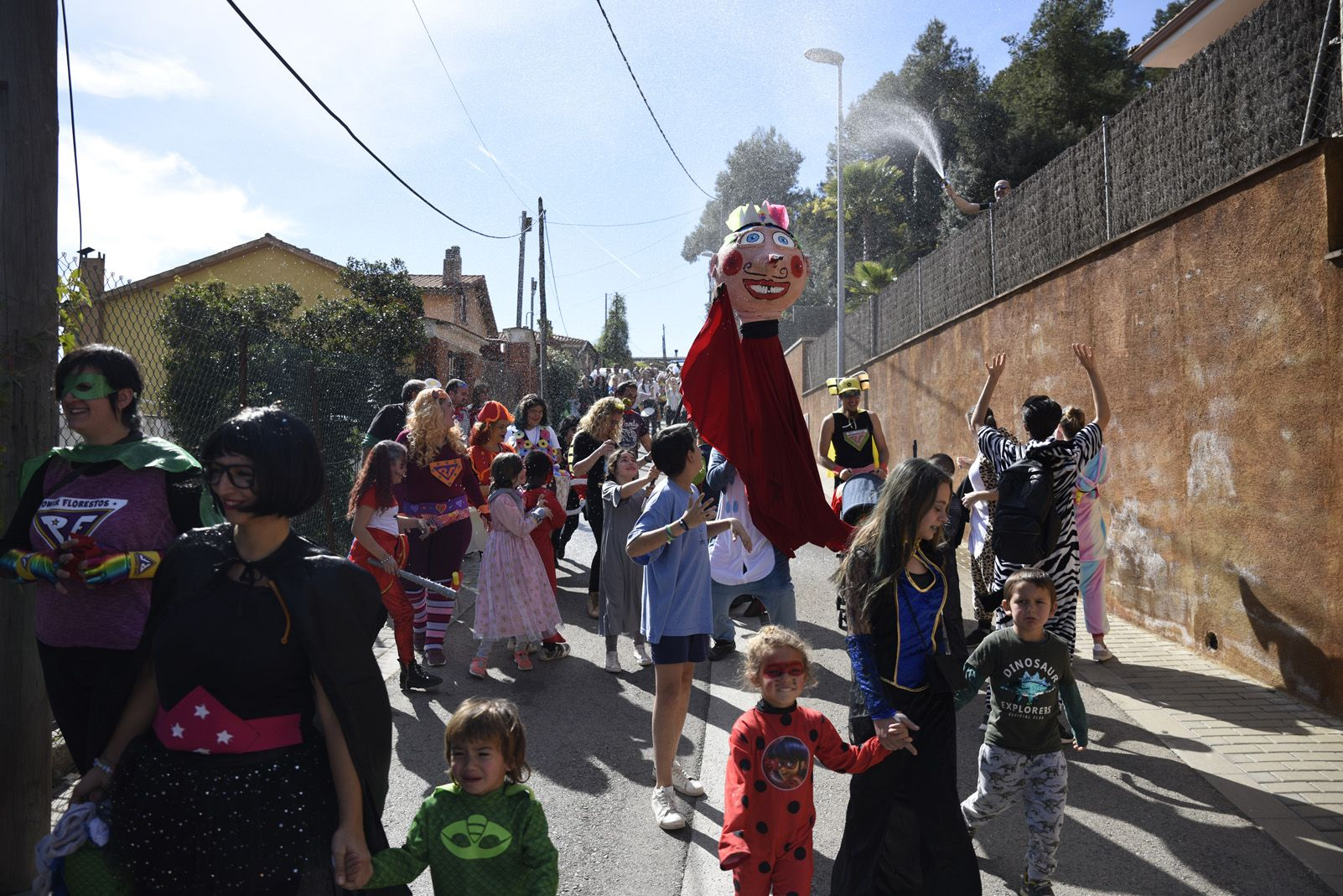 Rua de Carnaval a Les Planes. Foto: Bernat Millet.