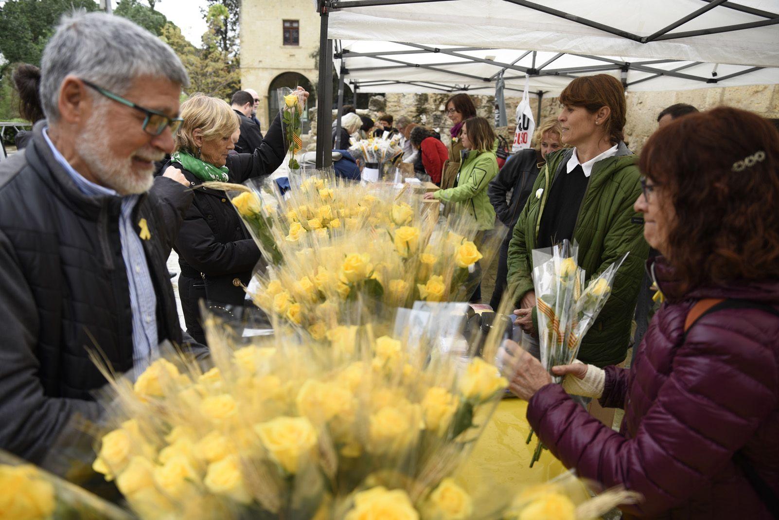 Les roses grogues de Sant Jordi. Foto: Bernat Millet.