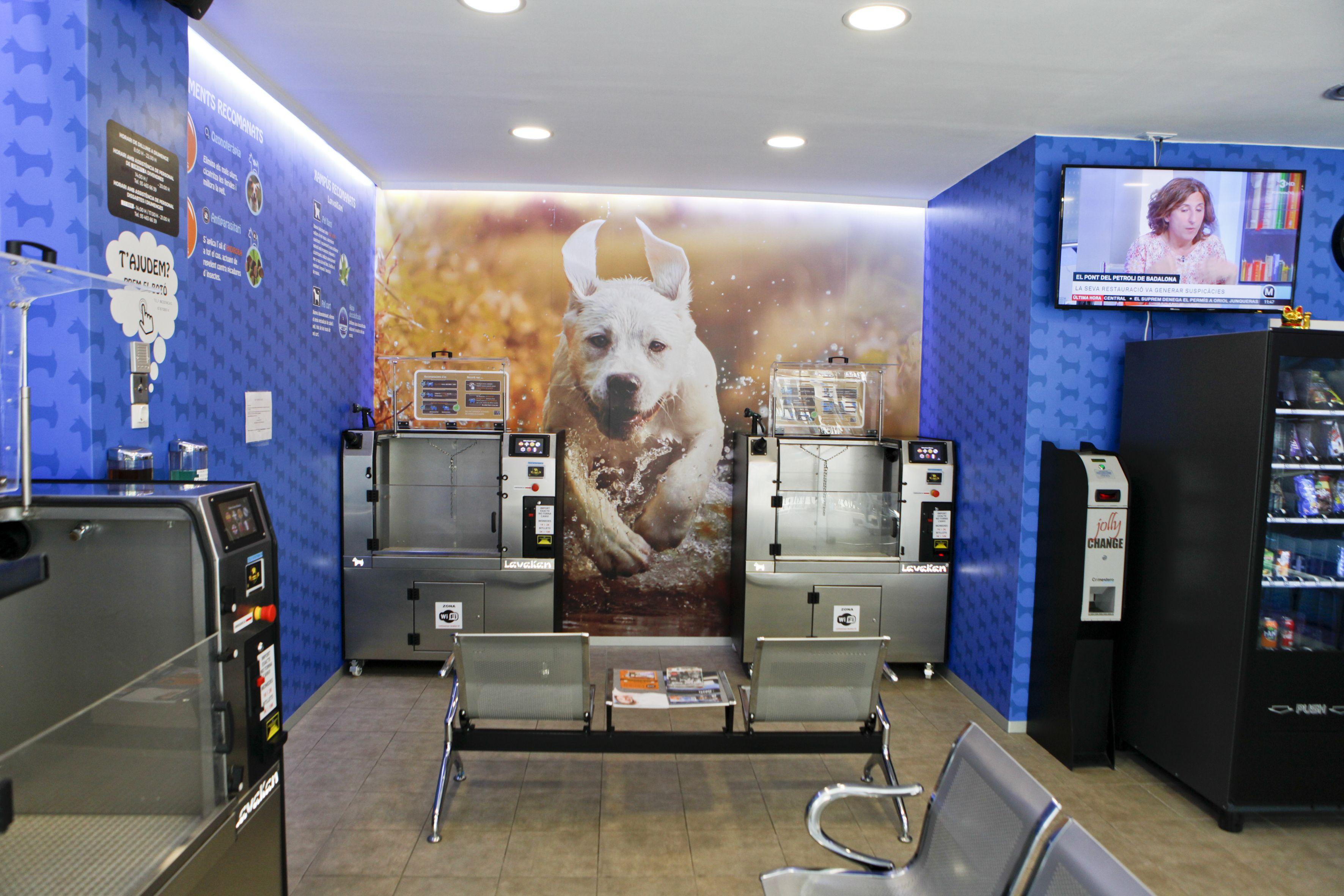 Disposen de diverses màquines on pots netejar la teva mascota FOTO: Bernat Millet