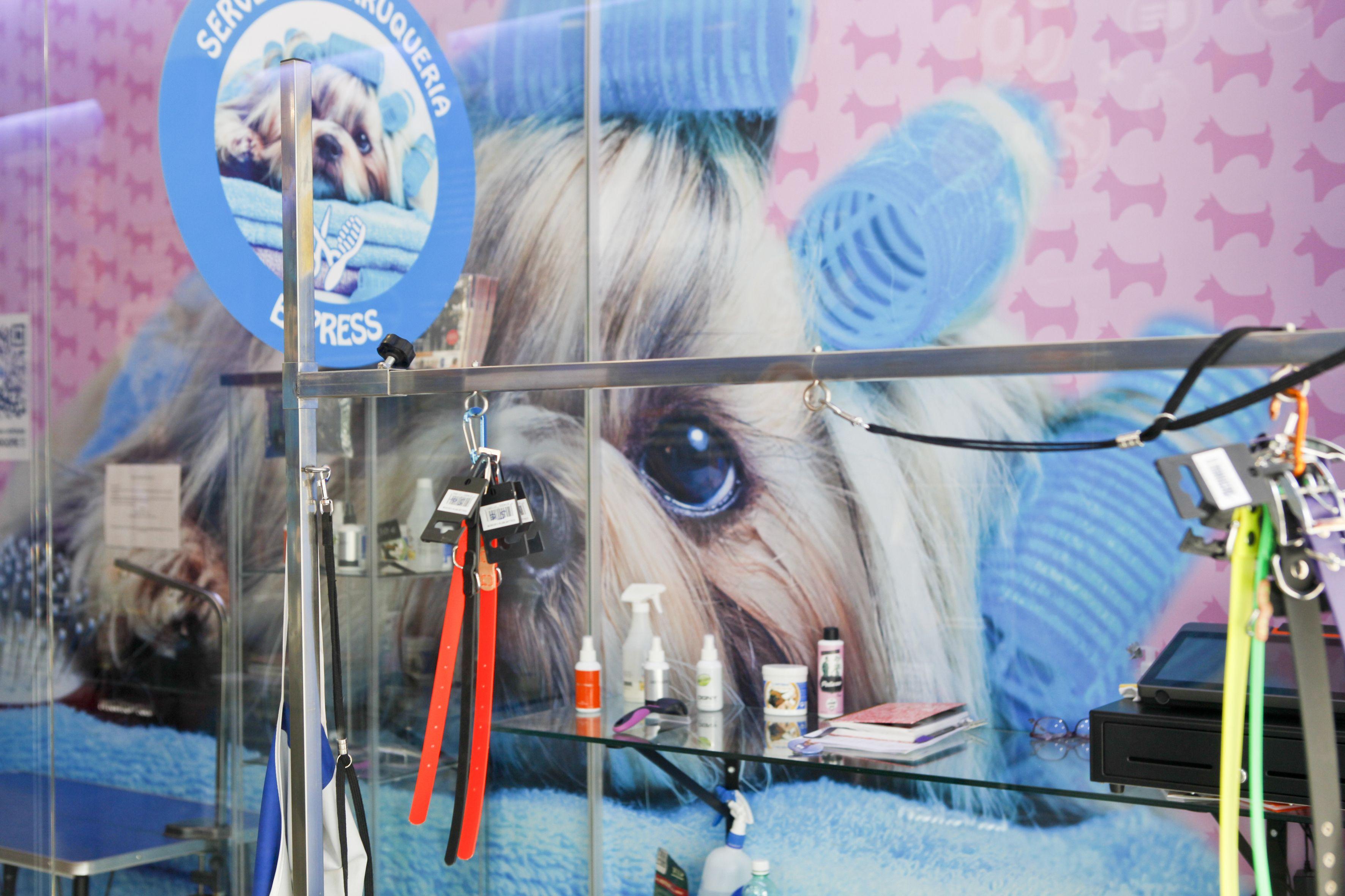 Un lloc on netejar al teu gos de forma senzilla FOTO: Bernat Millet