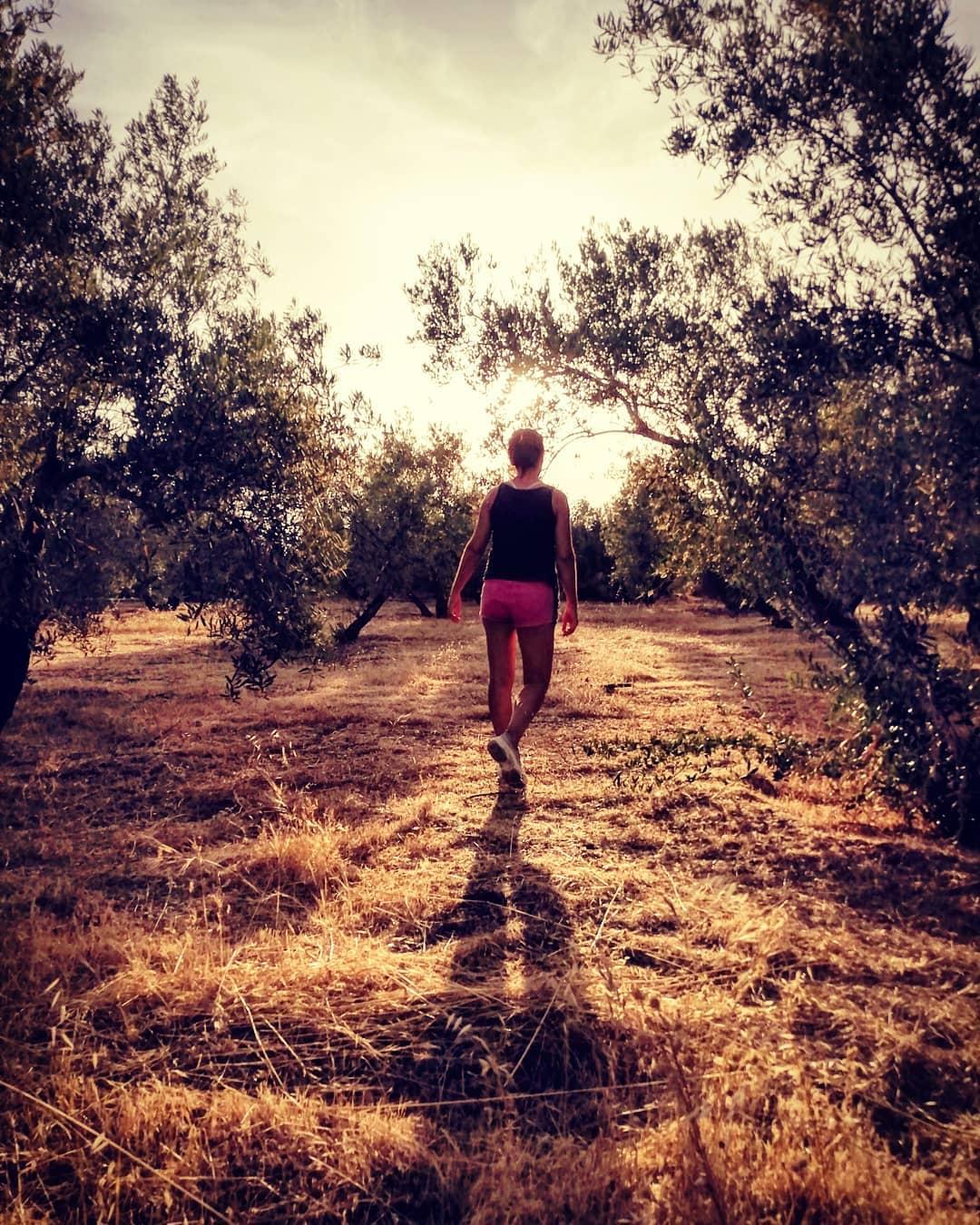 albrt crts   Perdre't entre oliveres, com qui és perd per un somni de mitjanit… Els teus orígens m'han portat a un nou caminar, i fan de guia del meu despertar… Un dia vem ser aquí…