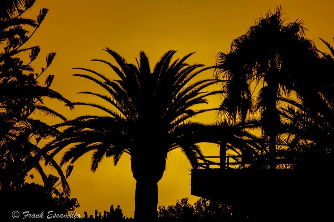 frank eskamilla   Sunset from Maspalomas (Canary Islands) Gran Canaria.