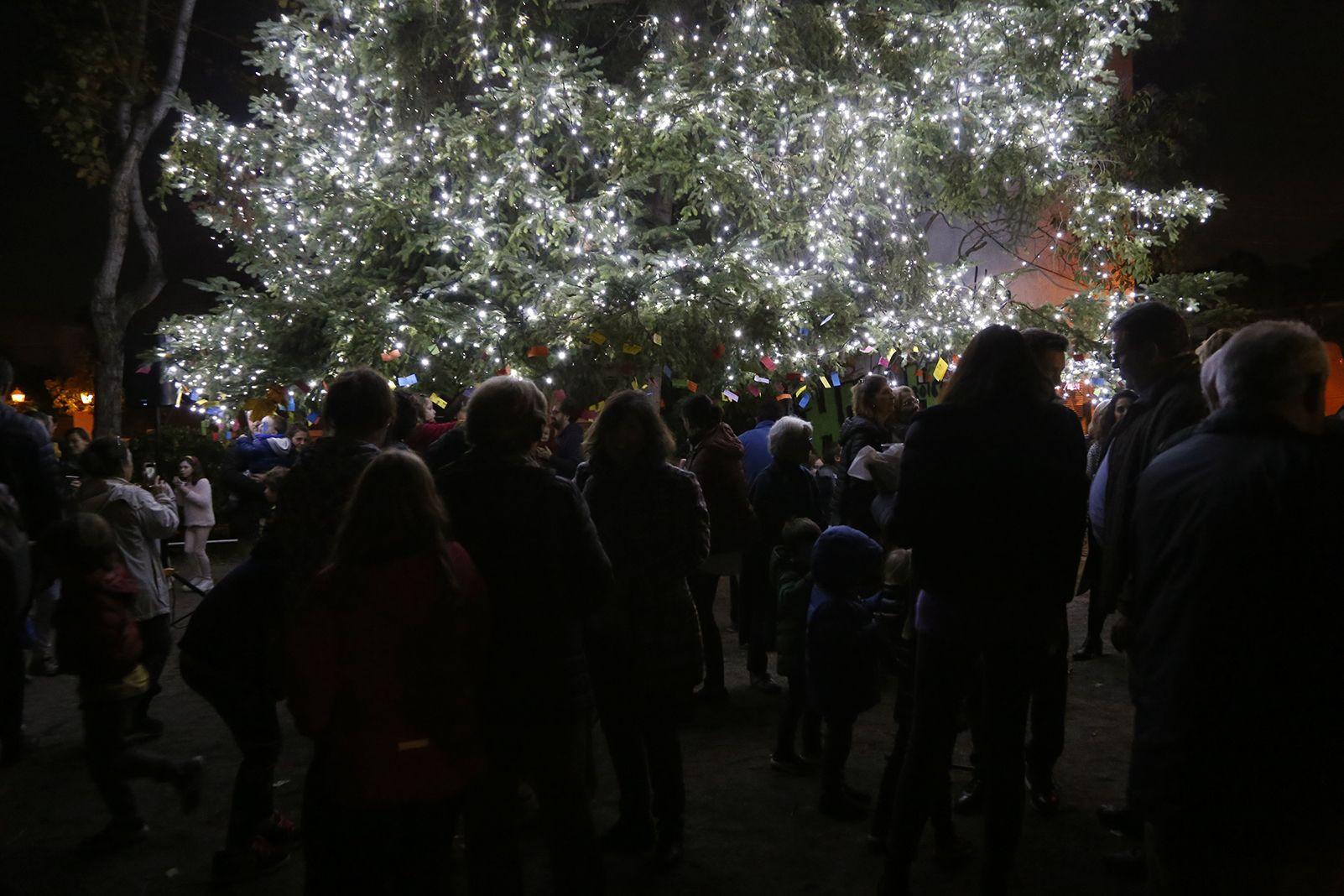 Encesa de llums de l'arbe de nadal de Valldoreix. FOTO: Anna Bassa