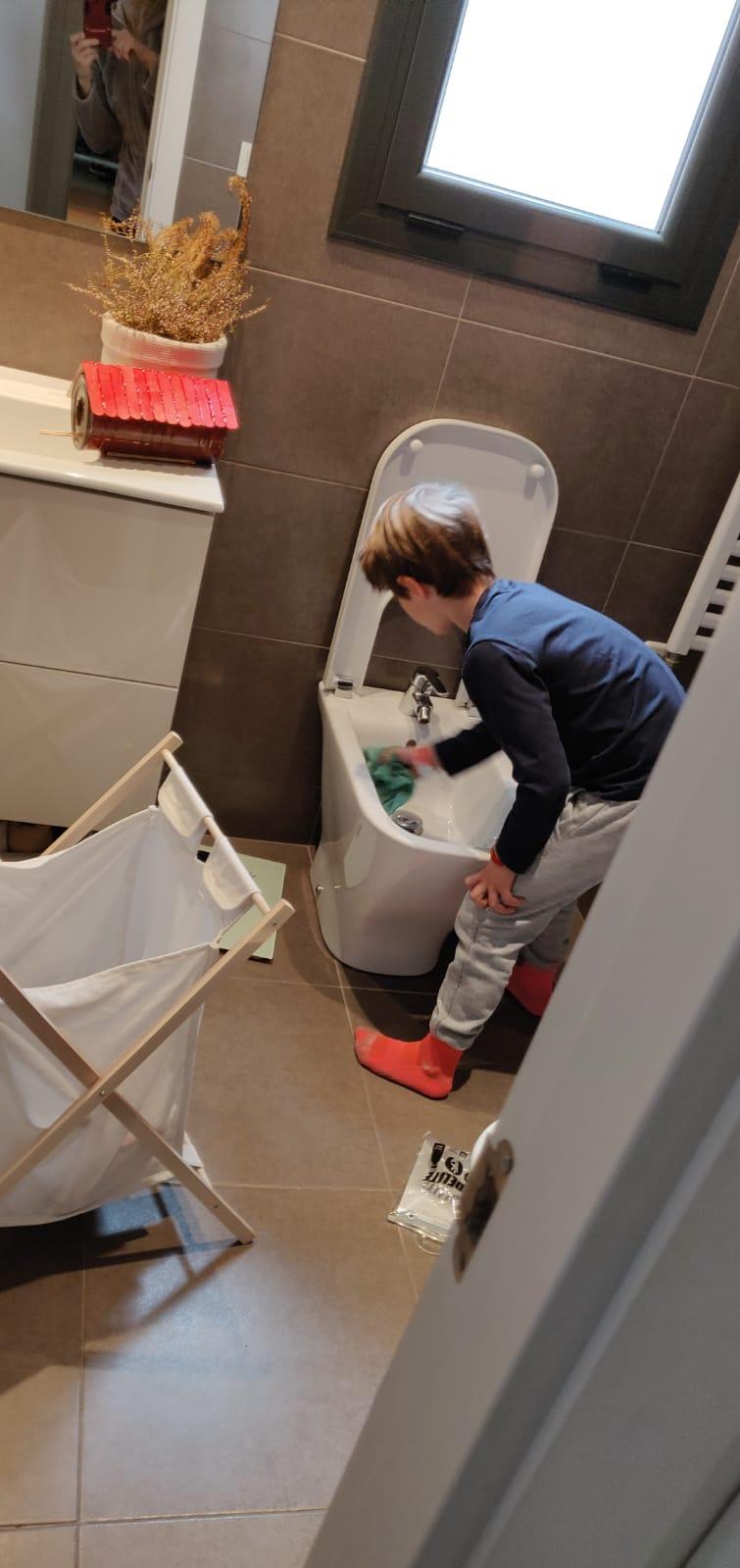 Ajudant en les tasques de neteja de casa.