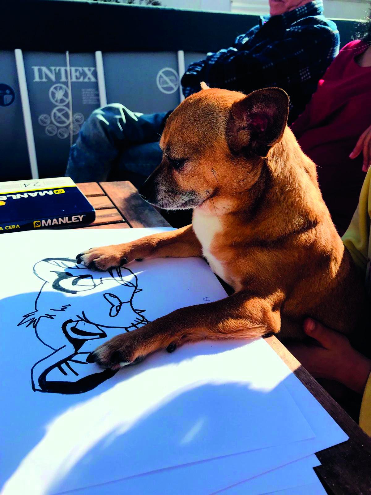 Dibuixant el Simba