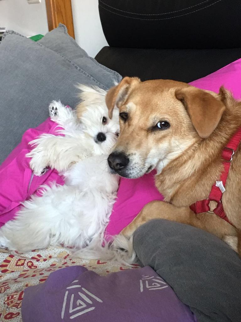 La Tana i la seva amiga Lia