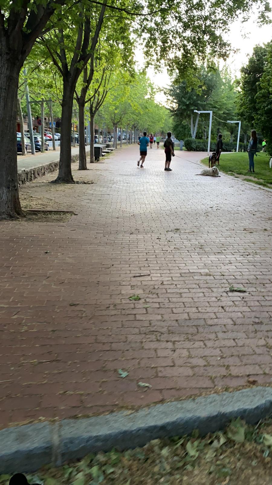 Alguns santcugatencs han gaudit del Parc Central