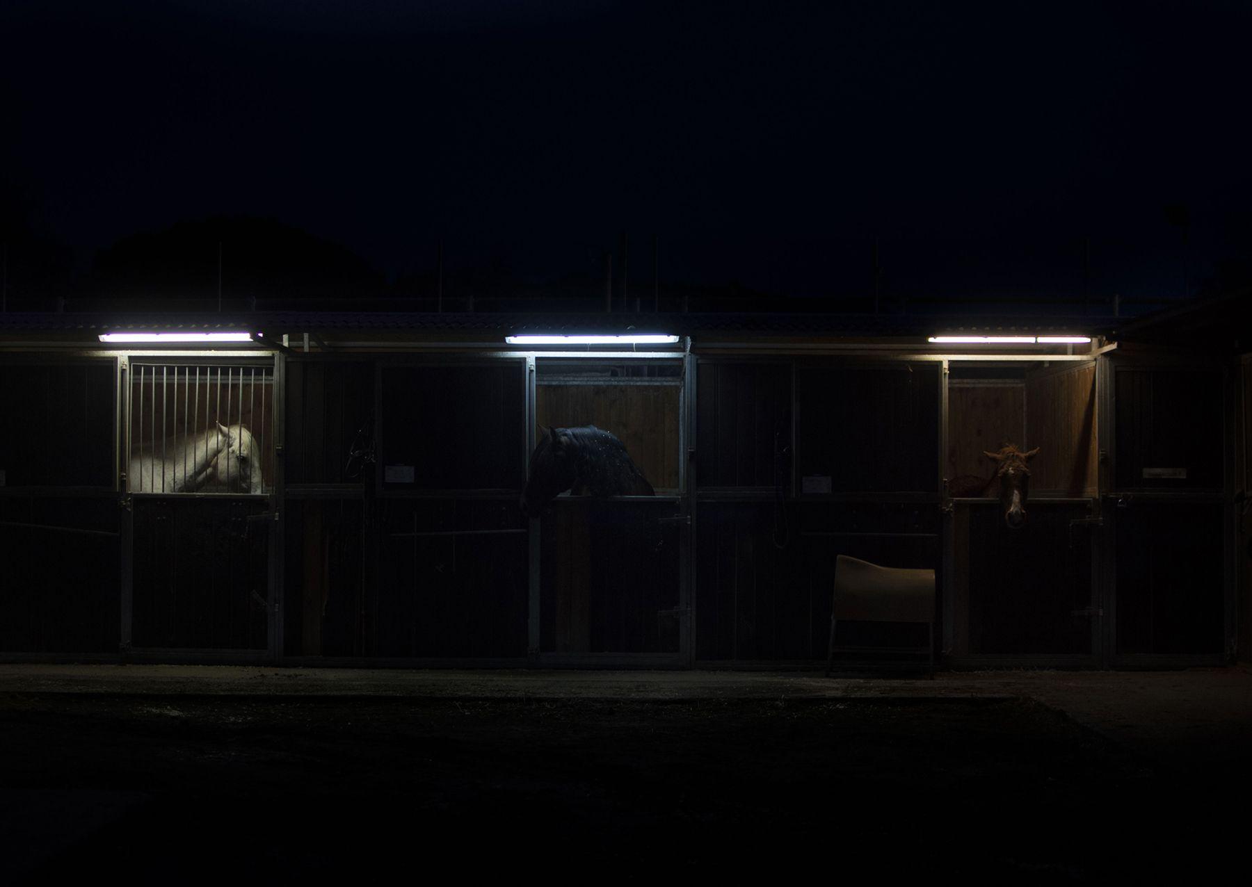 'Sigilo nocturno' feta a Sant Cugat. FOTO: Raquel Maes