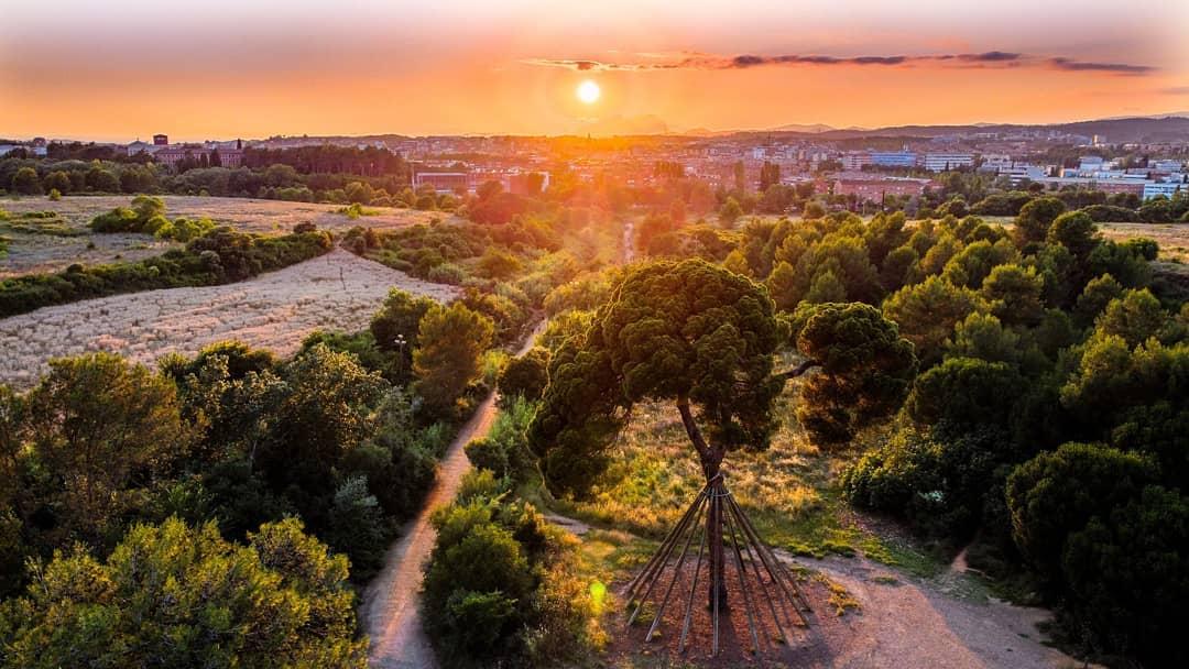 associacio torre negra   Pi d en Xandri sunset