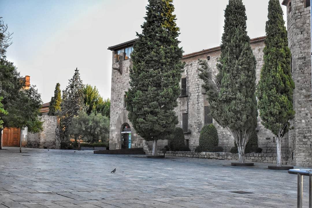 artfotografydvc   Monasterio de sant cugat 2020   1