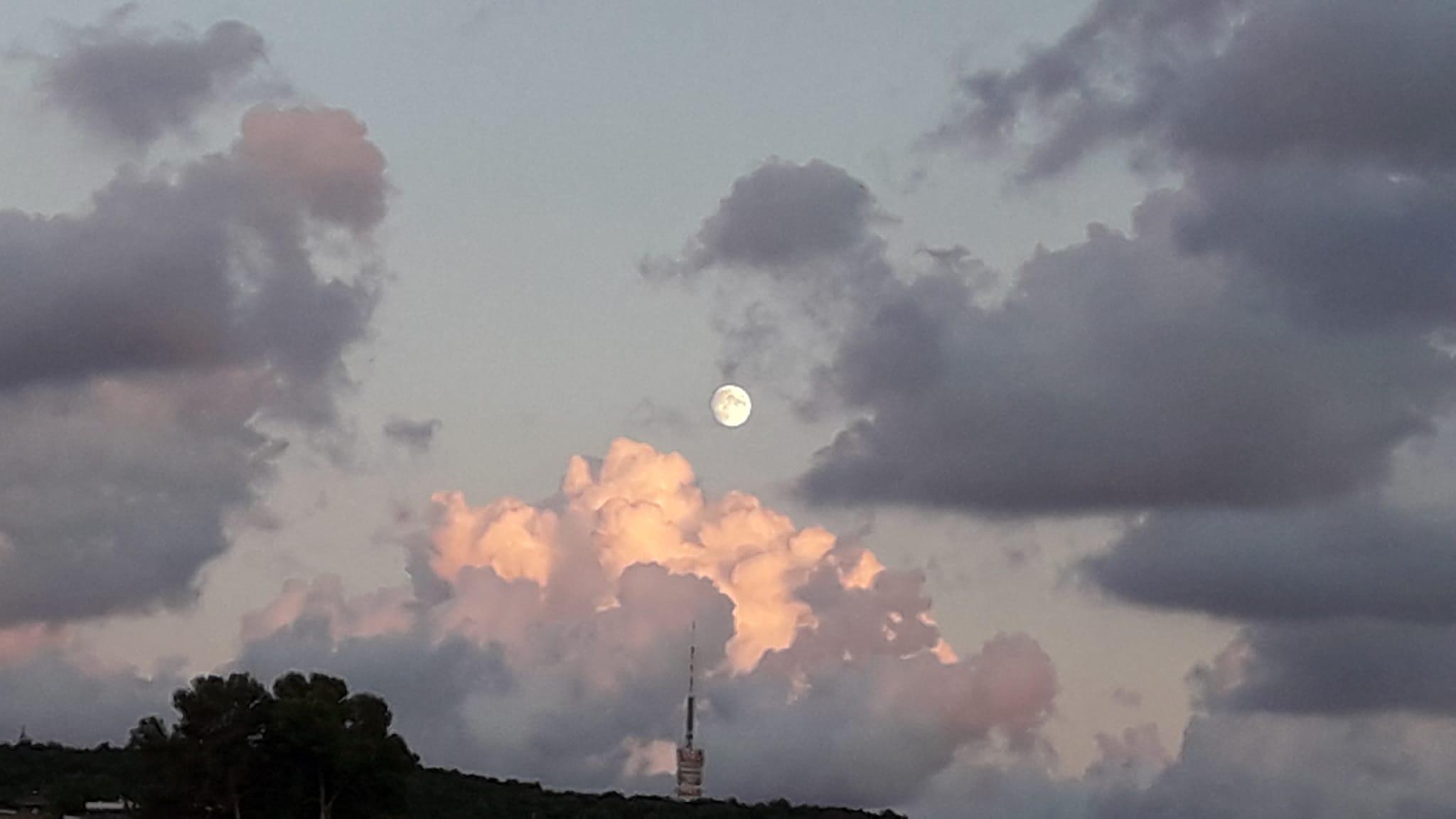 Antena, nuevo,lluna. La Floresta#LEONOR VALLES MURAY 137