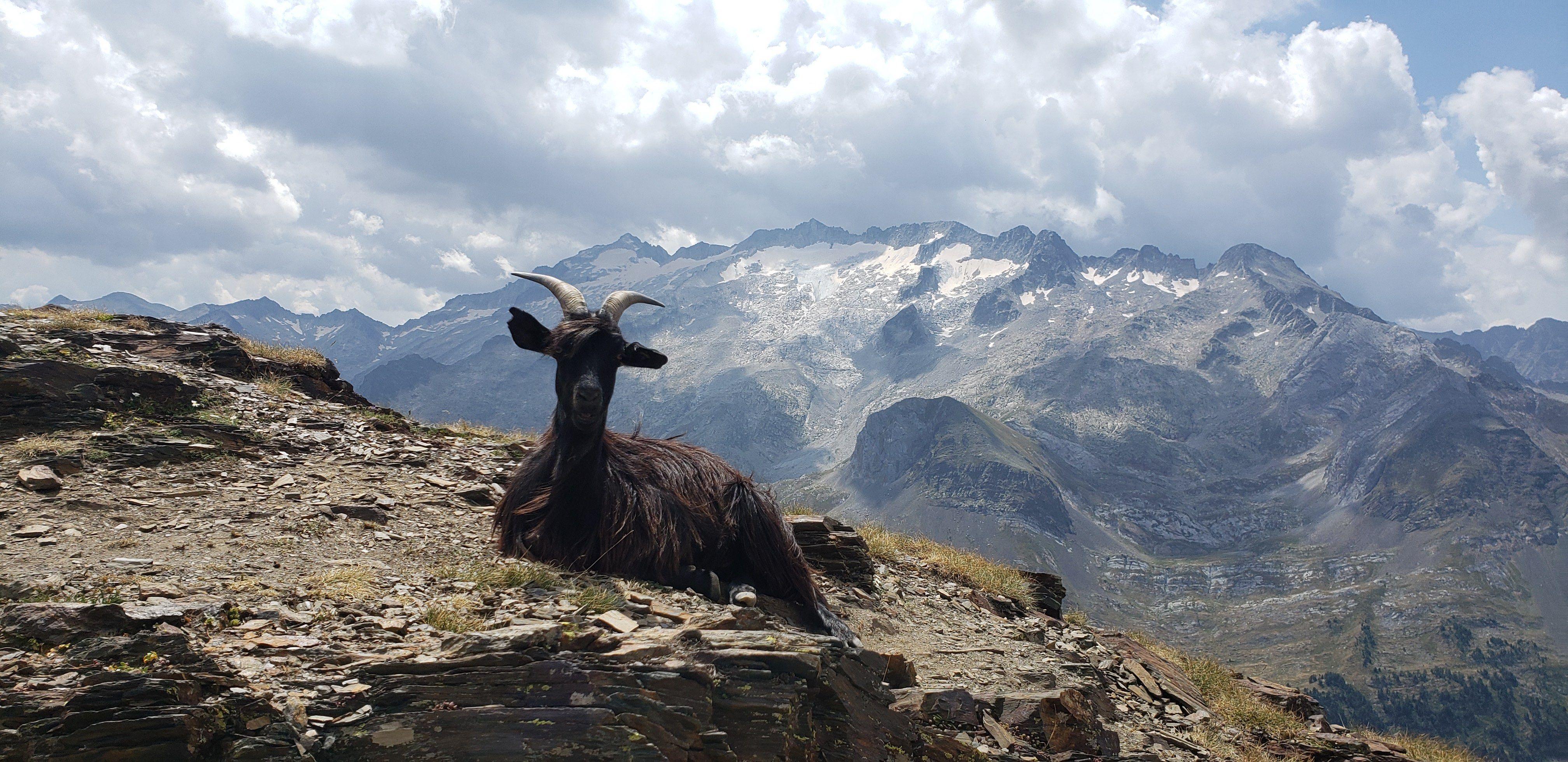 Aqui, esperant els guiris per la foto. Mont Salvaguardia#Quico Folch 95