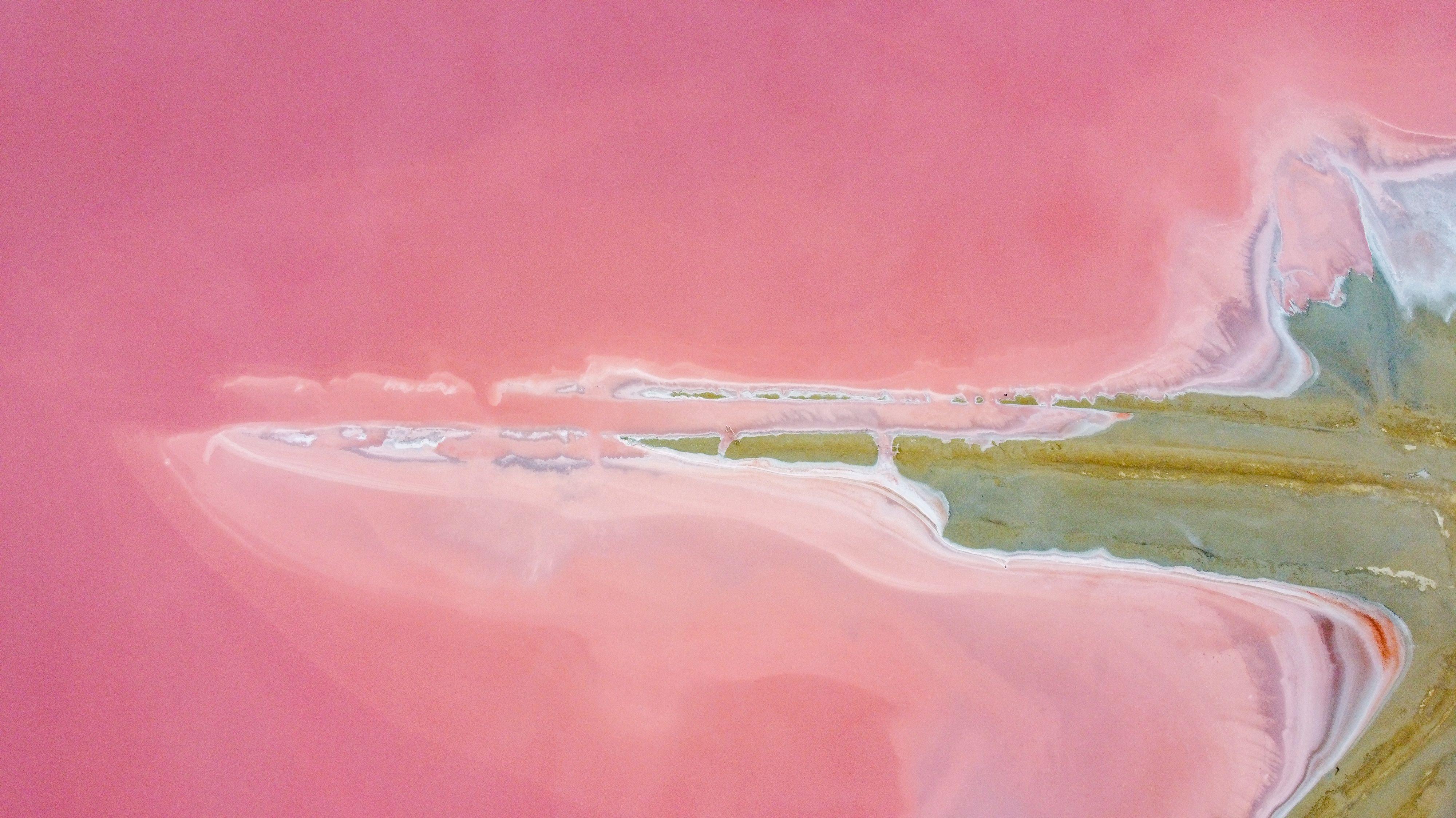 Bogeria de paisatge Salines Aigues Mortes#Alba Gimeno 312