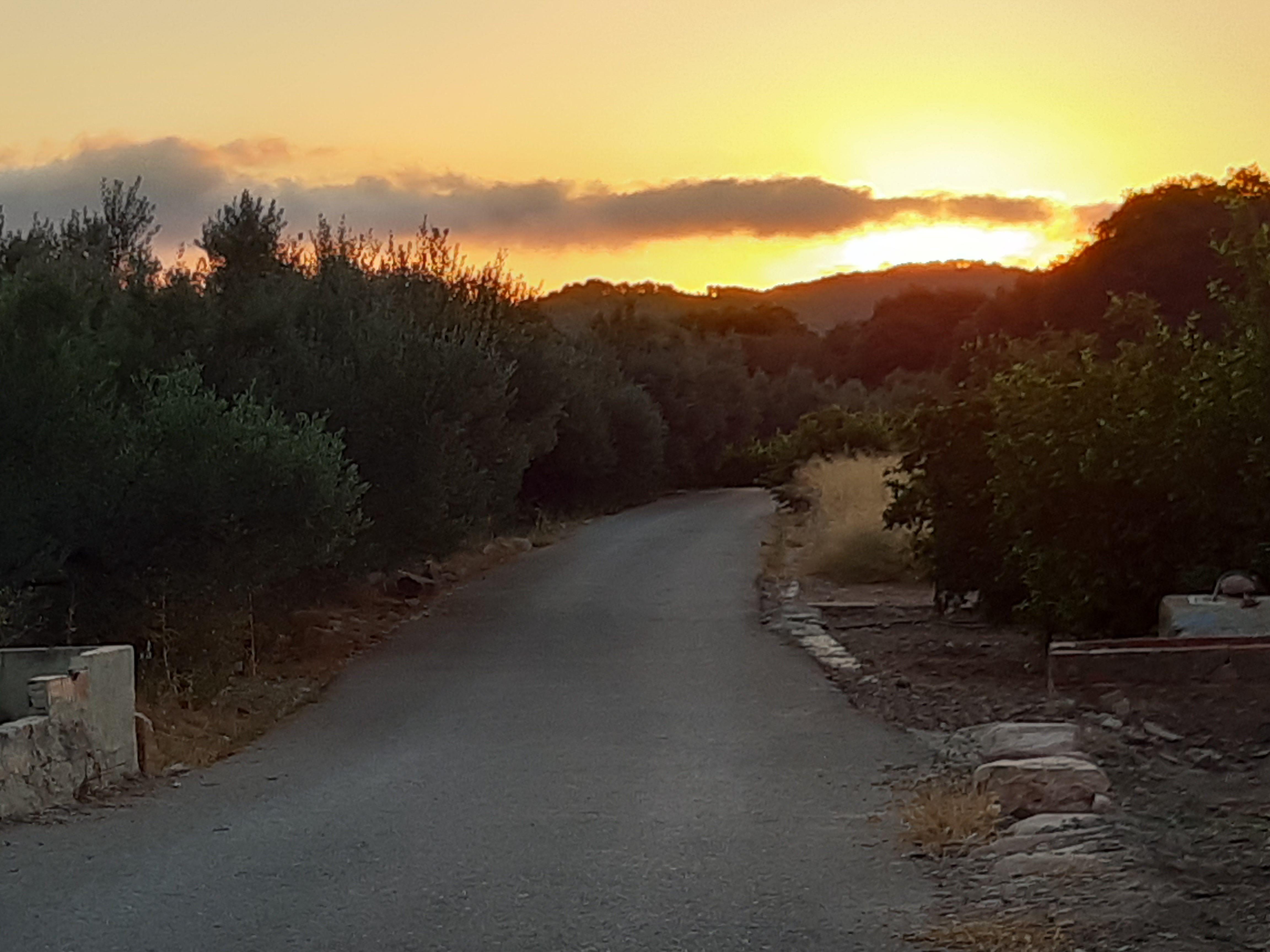 Bon  día, horts Artana (Castelló)#Jorge Pruna Urbina 140