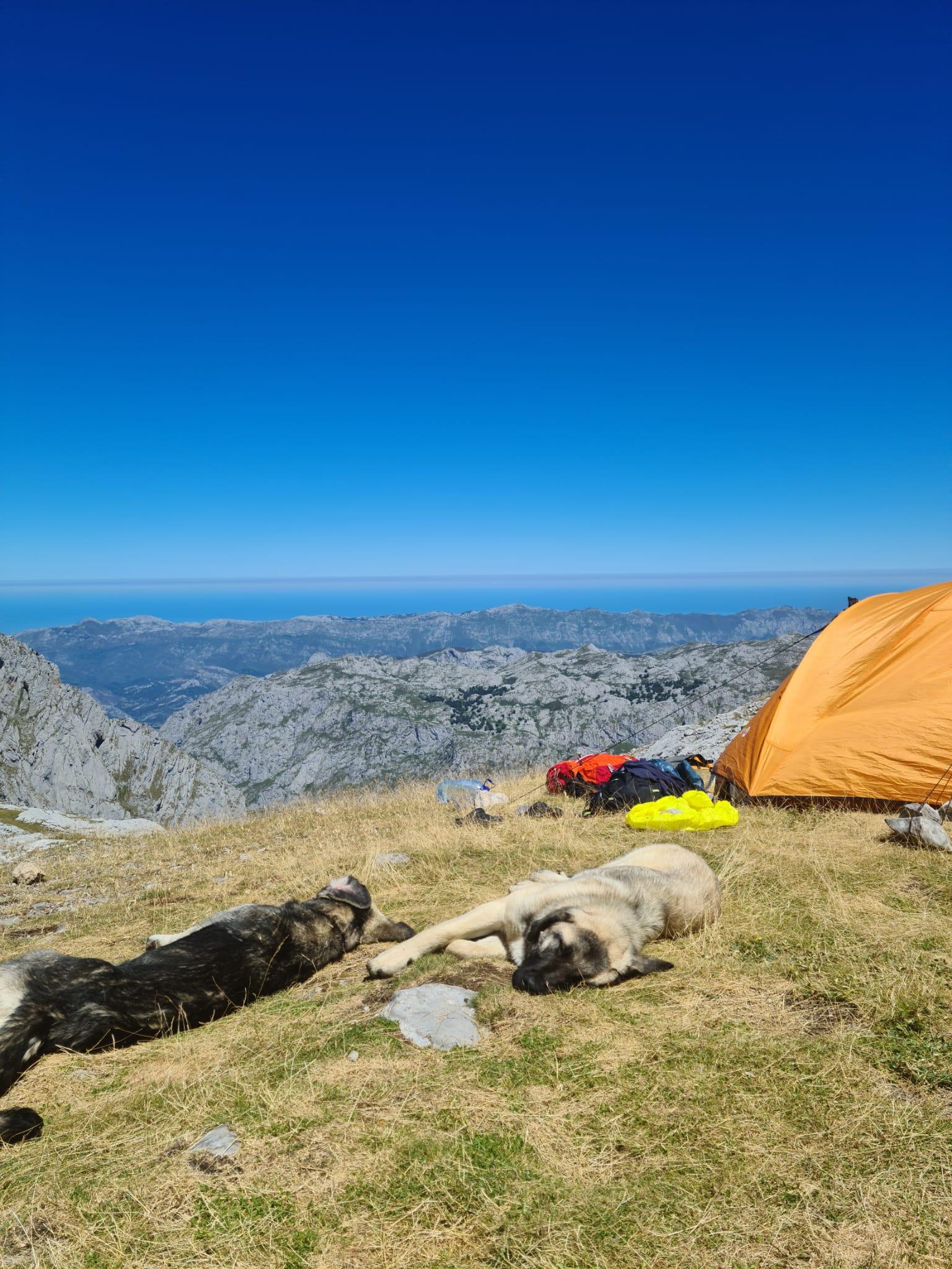Calma Picos de Europa#Ignasi Ventura 182