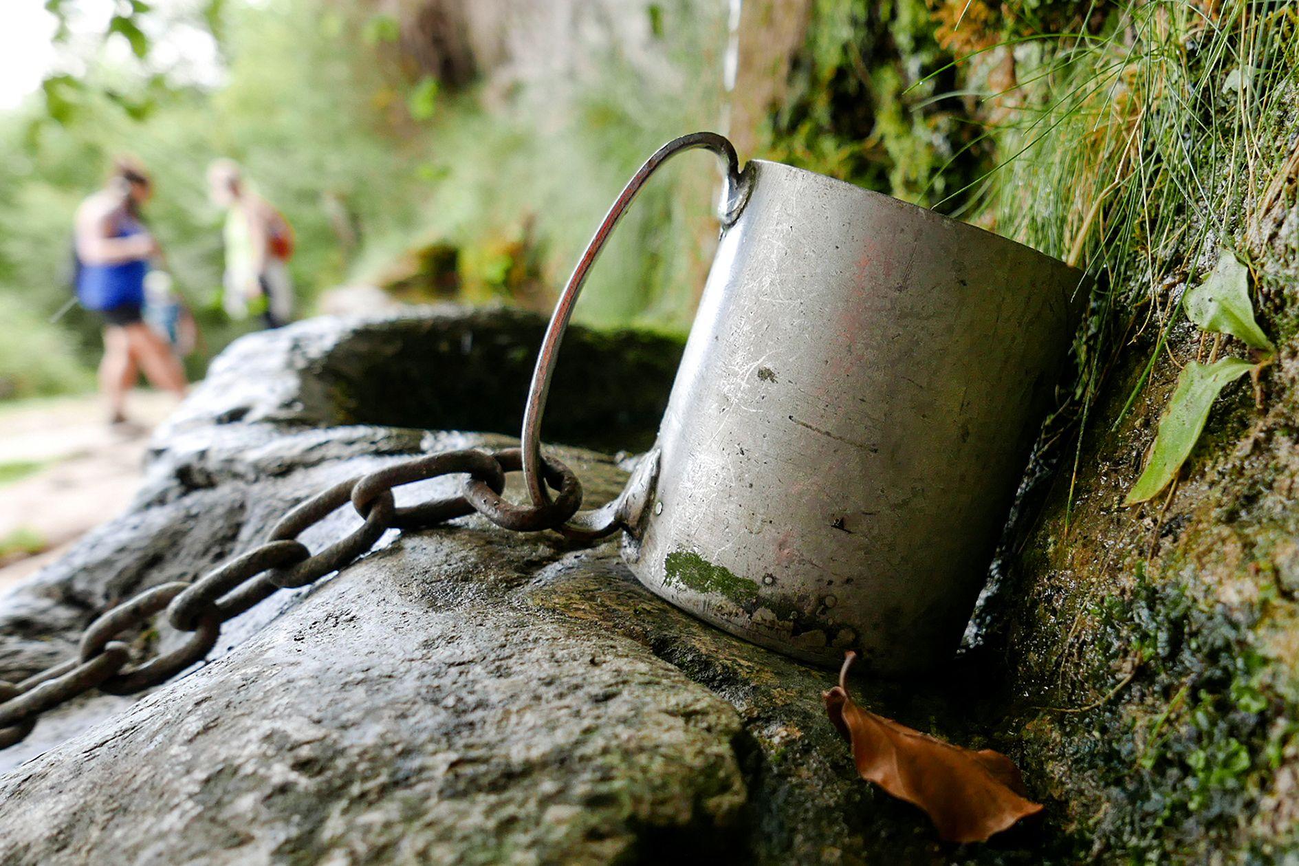 L aigua per tots Monte Txarlazo#Mayte Cortina Martínez 184