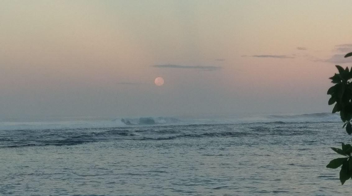 La lluna la pruna Samoa#Manuel Marusso 205