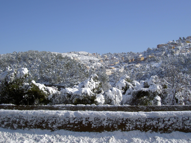 Nevada a Sant Cugat el 2010. FOTO: Andreu Garrell