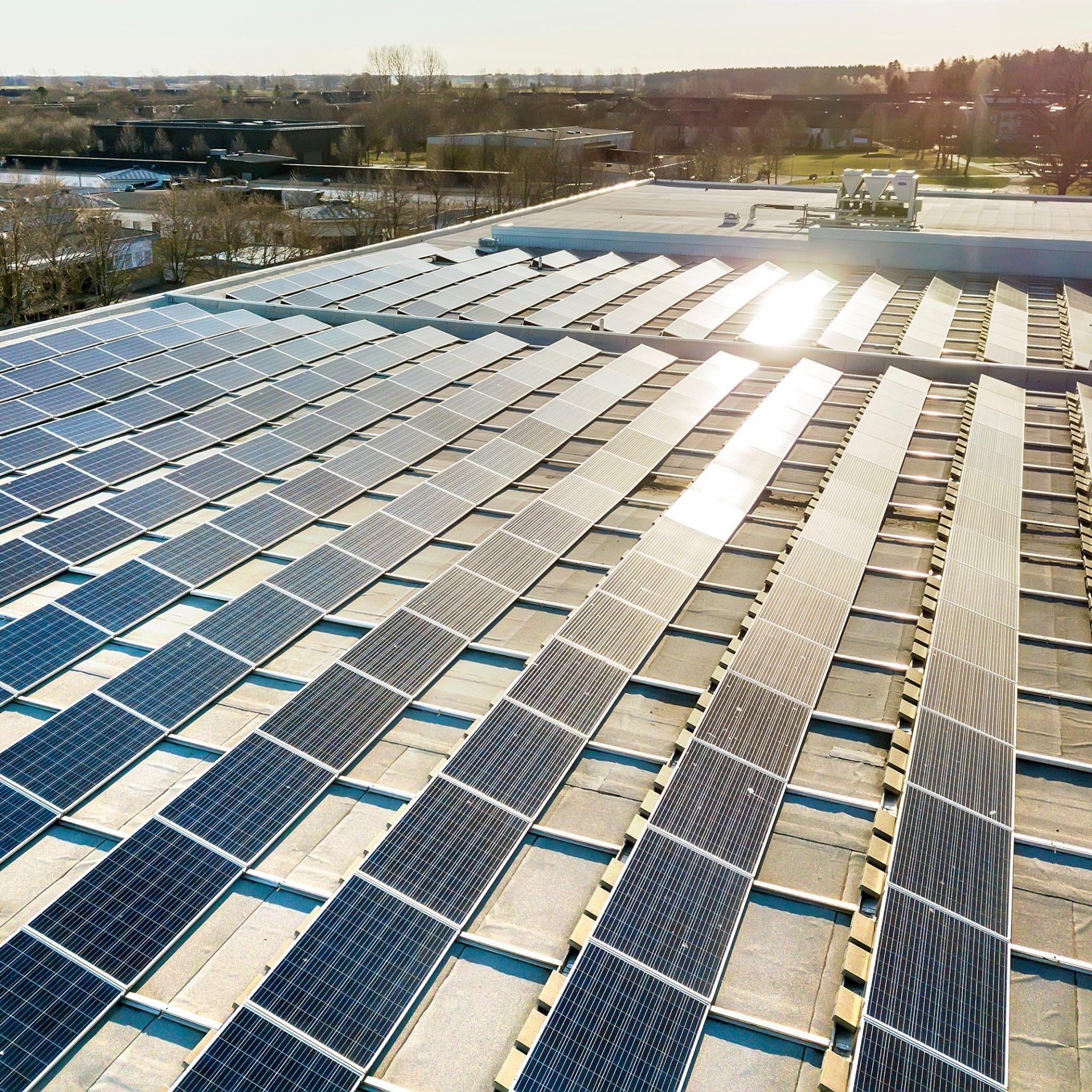 Vivim solar ofereix plaques solars per a l'empresa. FOTO: Cedida