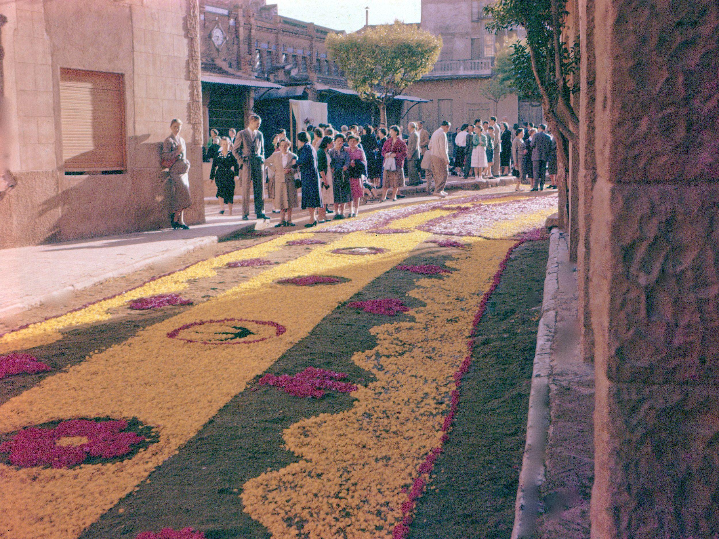 Gran catifa de flors en el Corpus del 1956. FOTO: Octavi Galceran