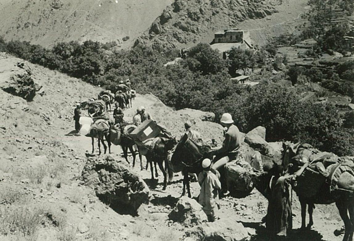Descens a Imlil amb les mules de càrrega